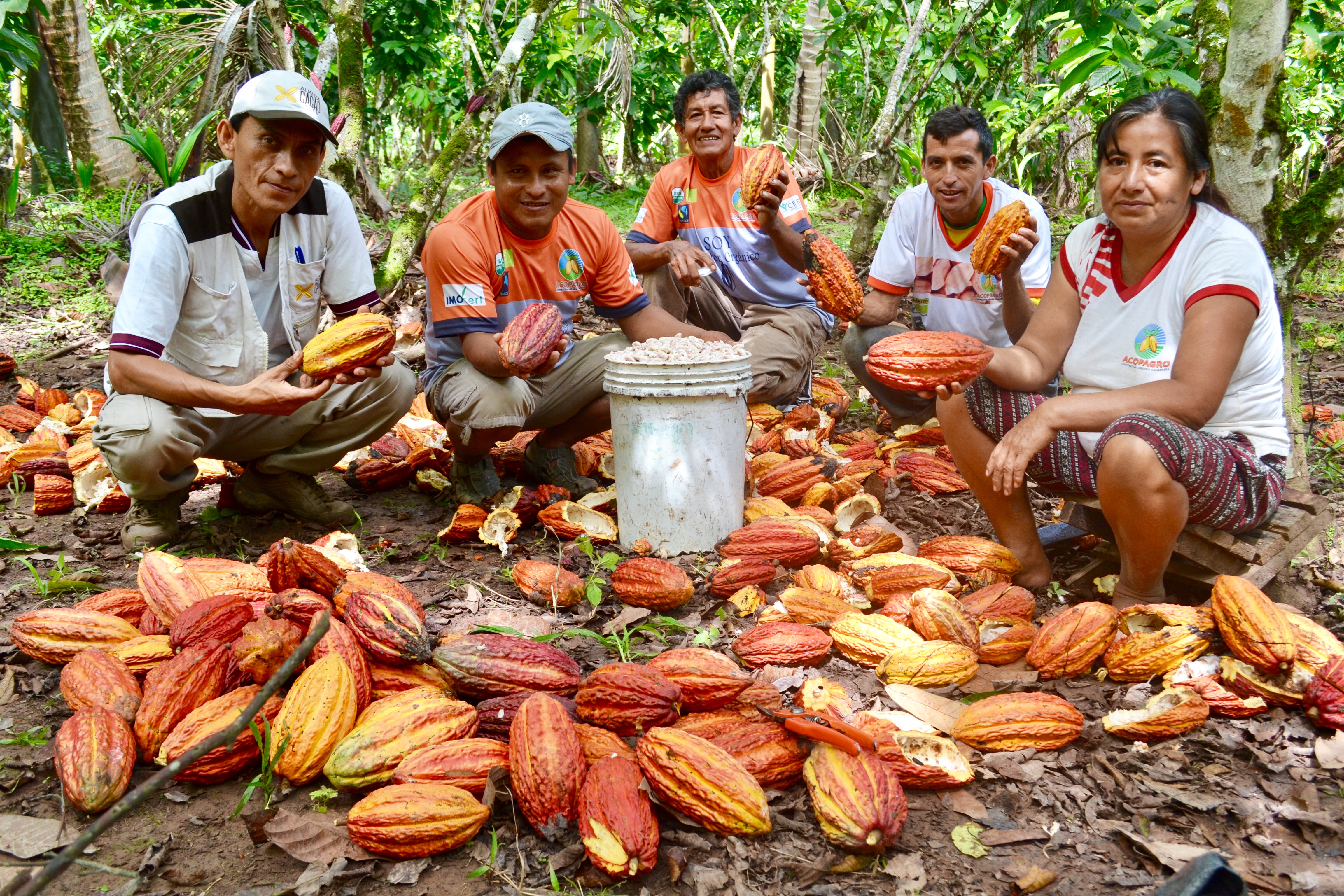 Credit: Peru Cocoa Alliance, 2018