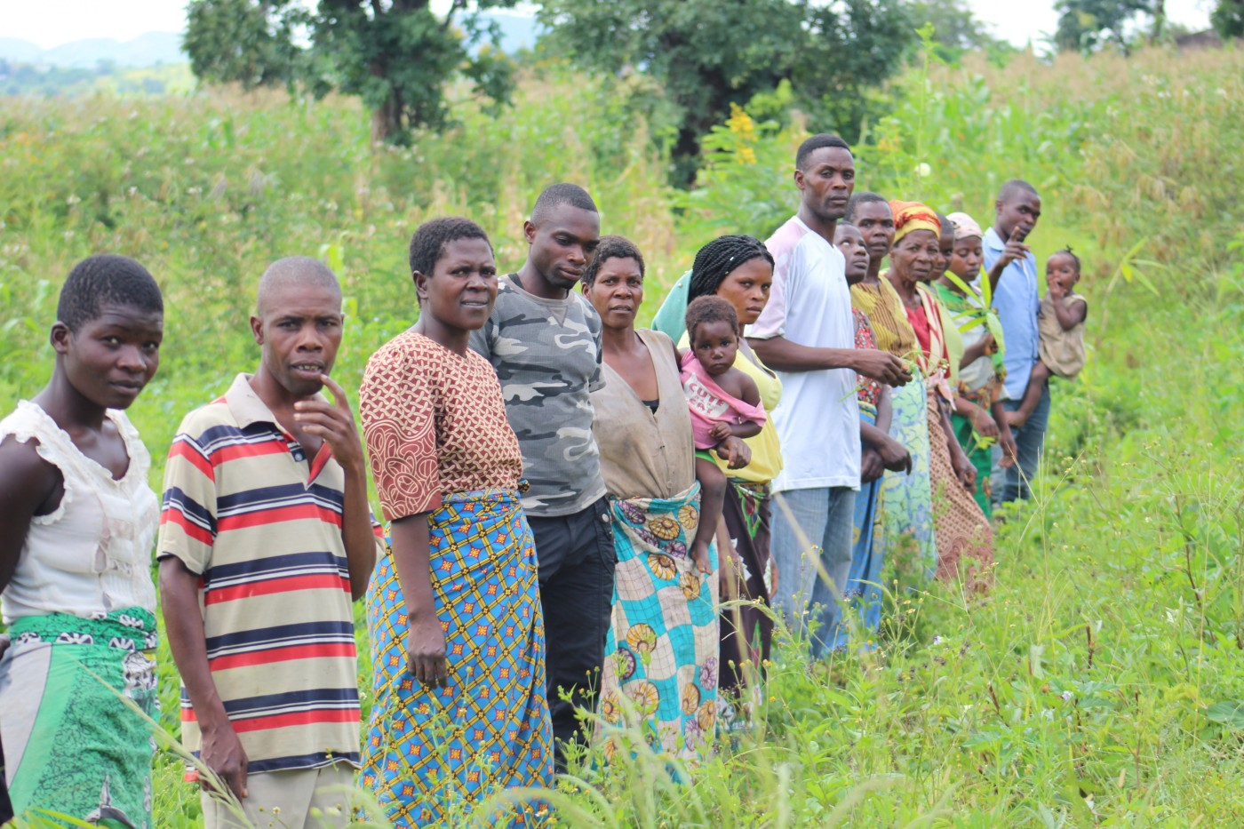 Village members create a community woodlot of bamboo. Credit: Theodora Kachingwa