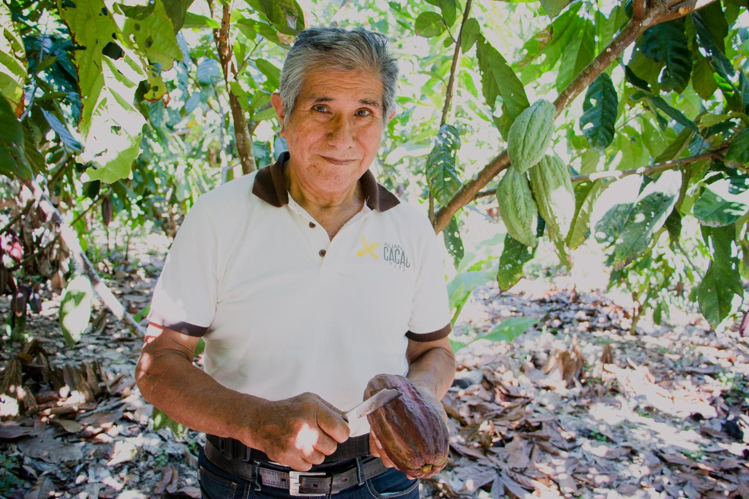 The Peru Cacao Alliance has so far achieved a 24% increase in income among 20,000 farmers. Source: Peru Cacao Alliance